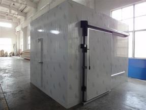 成都低温冷藏库安装|成都低温冷冻库