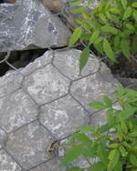 钢丝石笼网、护坡铅丝笼、河道防护工程石笼网、安平石笼网厂