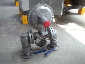 食堂改装锅炉燃气调压箱煤改气 润丰锅炉燃气调压箱