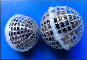 火山岩生物球