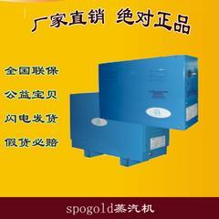 水疗蒸汽机 桑拿房/干蒸房/SPA专用蒸汽机 水疗蒸汽浴设备