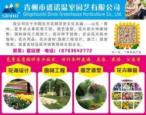 园林景观设计施工,工厂绿化专业植物