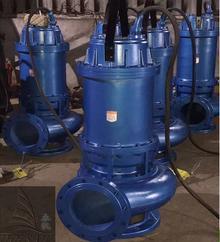 无堵塞固定式潜水排污泵 防缠绕排污潜水泵