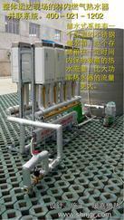 酒店太阳能燃气并联系统 商用燃气热水壁挂锅炉