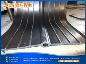 污水处理厂专用橡胶止水带 支持家乡产业
