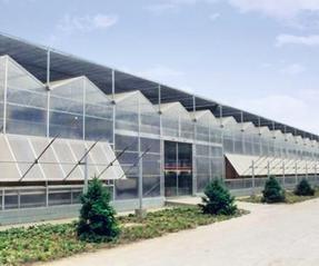 造价低重量轻煜林枫阳光板温室大棚