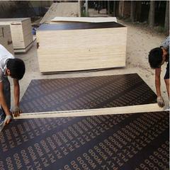 桂林模板厂-层层过胶-高温高压-辉煌模板