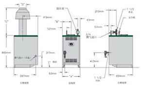 美国帕雷士GM系列燃气锅炉