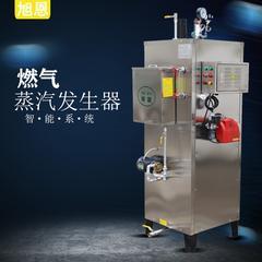 天然气蒸汽发生器哪里有卖