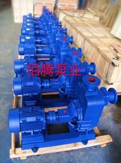 ZW型自吸式无堵塞自吸泵