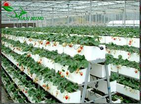 内蒙古苗床网移动苗床多层苗床全自动苗床草莓立体种植架