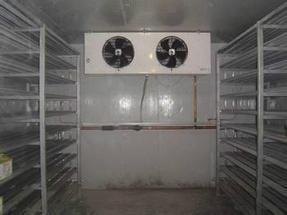 供应福州超低温速冻机
