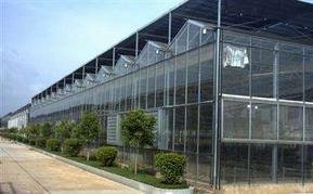 智能玻璃连栋温室