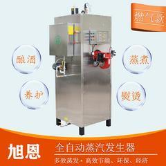 300公斤燃油蒸气发生器