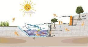 生态植草砖,鱼巢砖护坡砖,环保砖,自嵌式挡土墙