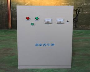 供应水箱自洁臭氧消毒器厂家