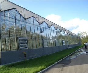 玻璃温室的玻璃该如何选择