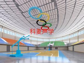 体育馆 吊顶天花空间吸声体
