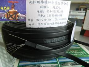太阳能热水器管道防冻电热带
