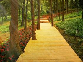 园林景观区仿木地板