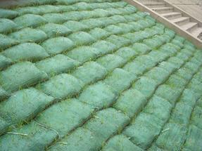浙江植生袋,公路边坡绿化,带草种植草袋,施工简便