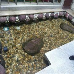 太仓庭院鱼池净化器丨锦鲤池除青苔设备丨别墅鱼池设计工程厂家