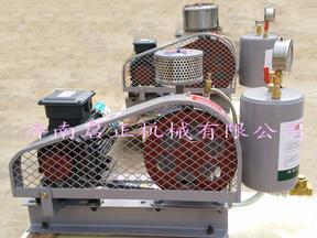 厂家直供学校 机关专用污水处理曝气回转式风机