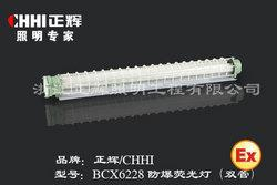 BCX6228防爆荧光灯