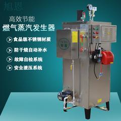 自然循环燃气蒸汽发生器结构图