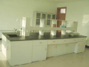 淄博潍坊实验台通风柜样品柜天平台高温台气瓶柜器皿家具装备生产厂家