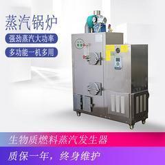 50公斤生物质燃料蒸汽发生器