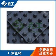 5公分高聚乙烯排水板/无纺布滤水层