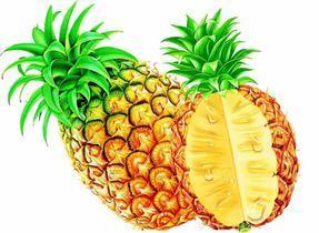 成都除甲醛菠萝有效果吗?