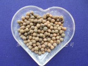 陶粒 高效挂膜生物陶粒 萍乡2-4/3-5mm陶粒滤料价格