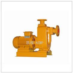 65ZWL20-30型直联式自吸排污泵