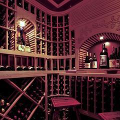 长沙酒窖酒架,酒窖定制公司,别墅酒窖