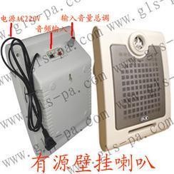 有源壁挂音箱 3W6W12W有源壁挂音箱价格