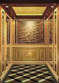 DMJ-008 电梯装修 电梯装饰 酒店电梯装修