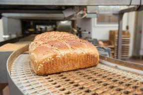 烘焙糕点隧道炉食品级合成高温链条油