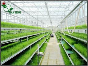 贵州自动苗床活动苗床全自动苗床生产厂家