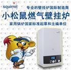 上海松江区小松鼠壁挂炉维修--地暖保养