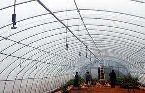 农业微喷头 温室大棚微喷头