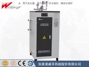 100-125kg/h医用/食品用蒸汽发生器