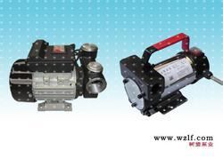 温州树盟牌加油泵--DY电动加油泵