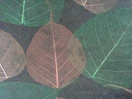 独特风格树叶墙纸纯天然然草编墙纸 Y2004
