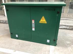10KV高压环网柜二进四出 全密封式 手动操作