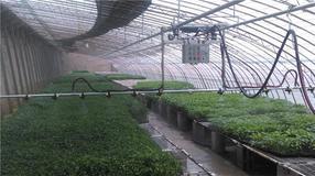 经济型温室自走式移动喷灌机配套系统