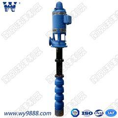 LJC干式长轴深井泵轴流深井泵电动深井泵立式多级深井泵深井长轴泵