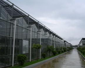 透光率高达90%以上的玻璃温室智能大棚