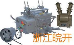 10KV线路ZW20-12FG/630分界开关供应商